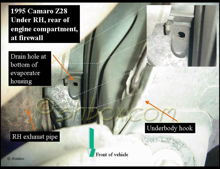 AC drain tube? - LS1TECH - Camaro and Firebird Forum Discussion