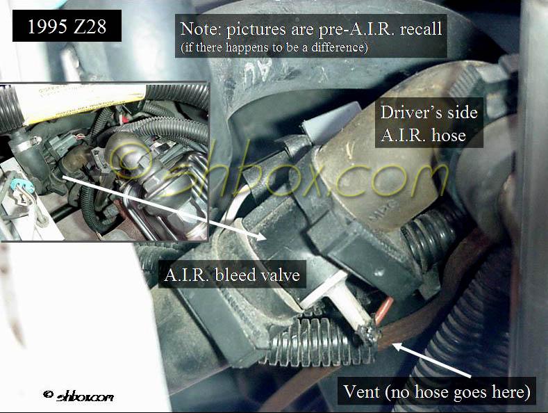 Corvette Fuel Pump For Ls Swap Corvette Free Engine