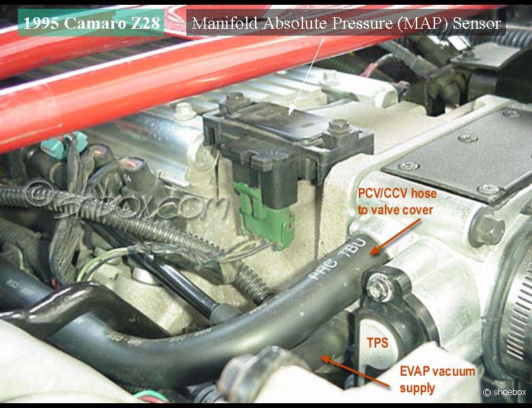 D Lt Swap Radiator Hose Water Pump Edited besides Dsc A X likewise Map furthermore Cruise Module likewise Gm Vortec L. on lt1 vacuum diagram
